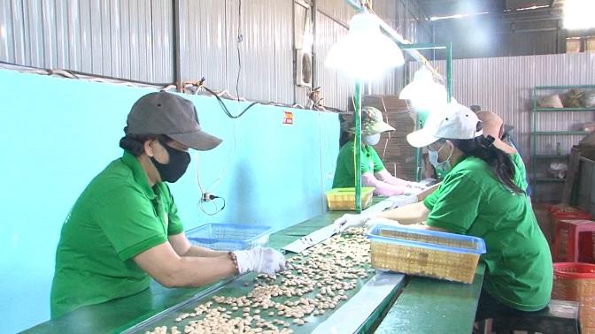 Đắk Nông: Xây dựng kế hoạch kết nối giao thương, tiêu thụ sản phẩm OCOP